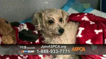 ASPCA TV Spot, 'Charlotte' - Thumbnail 9
