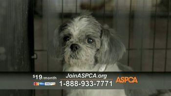 ASPCA TV Spot, 'Charlotte' - Thumbnail 4