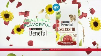 Purina Beneful Select 10 TV Spot, 'Selective' - Thumbnail 10