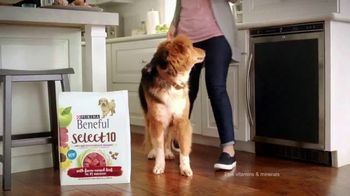 Purina Beneful Select 10 TV Spot, 'Selective' - Thumbnail 2