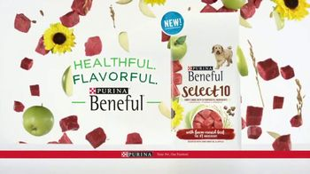 Purina Beneful Select 10 TV Spot, 'Selective' - Thumbnail 9