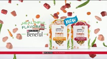 Purina Beneful Simple Goodness TV Spot, 'Amazing' - Thumbnail 8