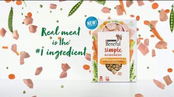 Purina Beneful Simple Goodness TV Spot, 'Amazing' - Thumbnail 5