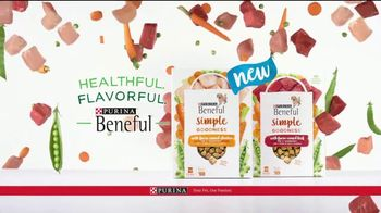Purina Beneful Simple Goodness TV Spot, 'Amazing' - Thumbnail 7