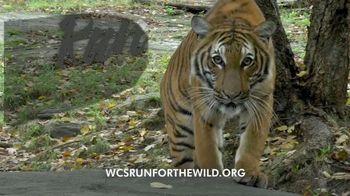 Wildlife Conservation Society TV Spot, '2018 Run for the Wild: Bronx Zoo' - Thumbnail 1