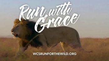 Wildlife Conservation Society TV Spot, '2018 Run for the Wild: Bronx Zoo' - Thumbnail 3