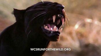 Wildlife Conservation Society TV Spot, '2018 Run for the Wild: Bronx Zoo' - Thumbnail 4