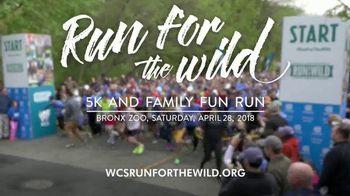 Wildlife Conservation Society TV Spot, '2018 Run for the Wild: Bronx Zoo' - Thumbnail 6