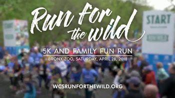 Wildlife Conservation Society TV Spot, '2018 Run for the Wild: Bronx Zoo' - Thumbnail 7