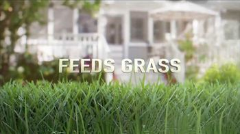 Scotts Thick'r Lawn TV Spot, 'Thin Yard' - Thumbnail 6