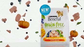 Purina Beneful Grain Free TV Spot, 'Superfoods' - Thumbnail 7