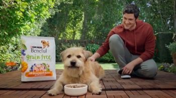 Purina Beneful Grain Free TV Spot, 'Superfoods' - Thumbnail 1