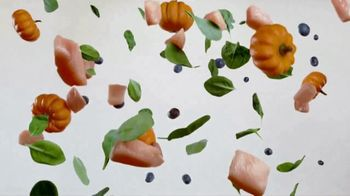 Purina Beneful Grain Free TV Spot, 'Superfoods' - Thumbnail 6