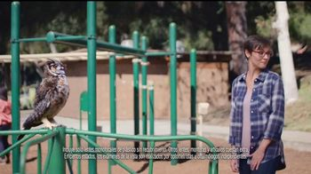 America's Best Contacts and Eyeglasses TV Spot, 'Parque infantil' [Spanish] - Thumbnail 5