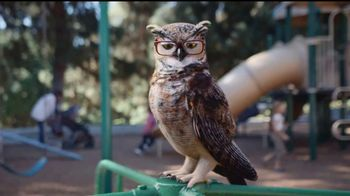 America's Best Contacts and Eyeglasses TV Spot, 'Parque infantil' [Spanish] - Thumbnail 7