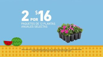 Lowe's Ofertas de Memorial Day TV Spot, 'Plantas' [Spanish] - Thumbnail 2