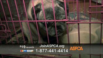 ASPCA TV Spot, 'Unbelievable' Featuring Eric McCormack - Thumbnail 8