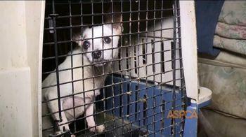 ASPCA TV Spot, 'Unbelievable' Featuring Eric McCormack - Thumbnail 1