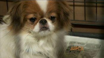 ASPCA TV Spot, 'Unbelievable' Featuring Eric McCormack - Thumbnail 2
