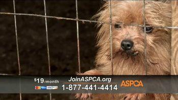 ASPCA TV Spot, 'Unbelievable' Featuring Eric McCormack - Thumbnail 5