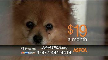 ASPCA TV Spot, 'Unbelievable' Featuring Eric McCormack - Thumbnail 6