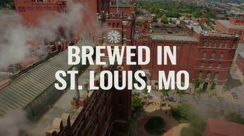 Budweiser TV Spot, 'Across America' Song by Goodbye June - Thumbnail 3