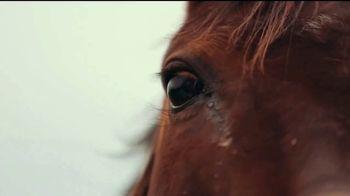 Lexington Visitors Center TV Spot, 'Horse Capital of the World' - Thumbnail 1