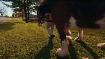 Lexington Visitors Center TV Spot, 'Horse Capital of the World' - Thumbnail 3