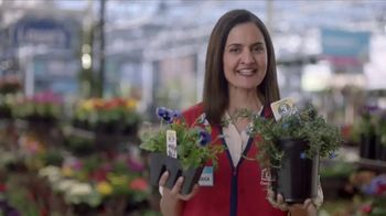 Lowe's TV Spot, 'The Moment: Annuals' - Thumbnail 6