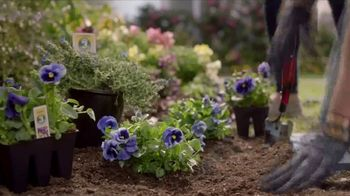 Lowe's TV Spot, 'The Moment: Annuals' - Thumbnail 7