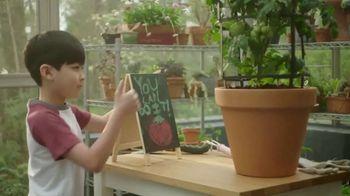 Bonnie Plants TV Spot, 'Sprout Channel: Tomato Plant'
