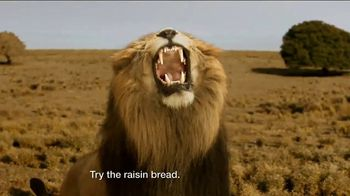 Days Inn TV Spot, 'Bask in the Sun: Safari Adventure' - 1576 commercial airings