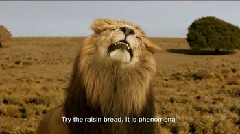 Days Inn TV Spot, 'Bask in the Sun: Safari Adventure' - Thumbnail 7
