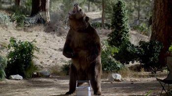 Volkswagen Memorial Day Event TV Spot, 'Bear' [T2] - Thumbnail 3