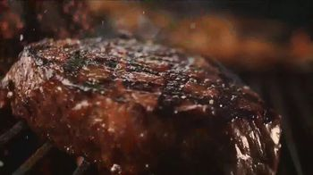 Applebee's Big and Bold Grill Combos TV Spot, 'Perfect Pairings' - Thumbnail 2