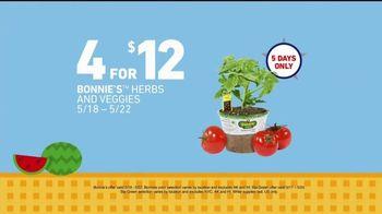 Lowe's Memorial Day Savings TV Spot, 'Herbs, Veggies and Soil' - Thumbnail 5