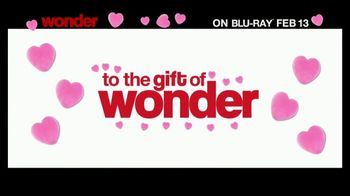 Wonder Home Entertainment TV Spot - Thumbnail 7