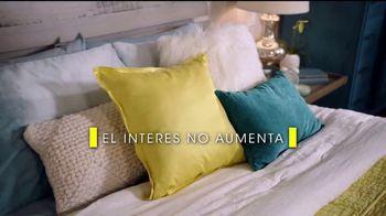 Rooms to Go Venta por Presidents' Day TV Spot, 'Financiar' [Spanish] - Thumbnail 6