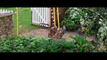 Peter Rabbit - Alternate Trailer 23