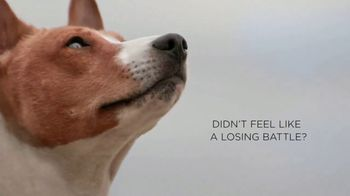 Purina Pro Plan Simply Fit TV Spot, 'Pet Weight Loss: Not a Losing Battle' - Thumbnail 3