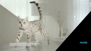Purina Pro Plan Simply Fit TV Spot, 'Pet Weight Loss: Not a Losing Battle' - Thumbnail 4