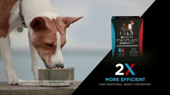 Purina Pro Plan Simply Fit TV Spot, 'Pet Weight Loss: Not a Losing Battle' - Thumbnail 6