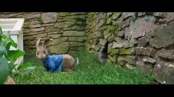 Peter Rabbit - Alternate Trailer 25