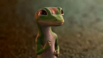 GEICO TV Spot, 'The Gecko Visits Coney Island' - 6532 commercial airings