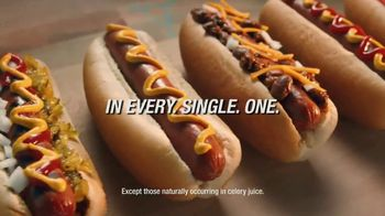 Oscar Mayer TV Spot, 'For the Love of Hot Dogs: Finish Summer Strong' - Thumbnail 4