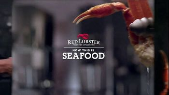 Red Lobster Crabfest TV Spot, 'Seafood Lover's Lunch' - Thumbnail 7