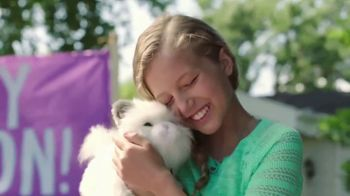 Little Live Pets Cuddles My Dream Kitten TV Spot, 'Dream Come True'