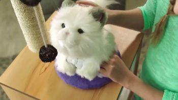 Little Live Pets Cuddles My Dream Kitten TV Spot, 'Dream Come True' - Thumbnail 5