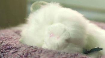 Little Live Pets Cuddles My Dream Kitten TV Spot, 'Dream Come True' - Thumbnail 9