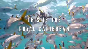 Royal Caribbean Cruise Lines TV Spot, 'Never Say Never Land' - Thumbnail 7